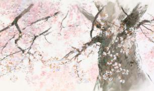 Studio Ghibli liberó fondos de sus principales películas para usar en videollamadas
