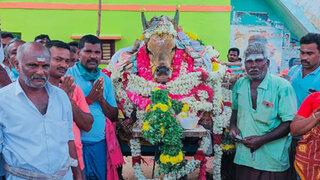 India: pueblo viola cuarentena para asistir al funeral de un toro