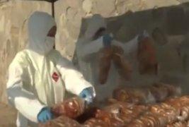 """Municipalidad de Chorrillos llevan pan al Asentamiento Humano """"27 de Junio"""""""