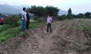 Caral: Zona arqueológica fue invadida y dañada durante la cuarentena