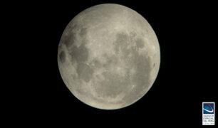 Luna llena de flor: hoy se podrá ver la última superluna de 2020
