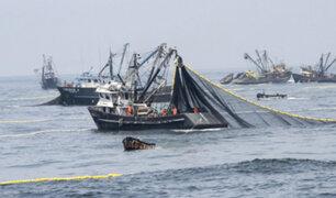 Actividad pesquera: primera temporada de anchoveta iniciará el 13 de mayo