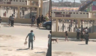 Chiclayo: vecinos descontrolados saquearon donación de pollos