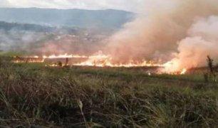 San Martín: incendio forestal arrasó con al menos una hectárea en pleno estado de emergencia