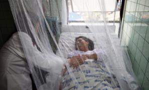 Ica lucha contra 4 674 casos confirmados de dengue