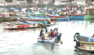 Pucusana: denuncian que pescadores artesanales no respetan cuarentena