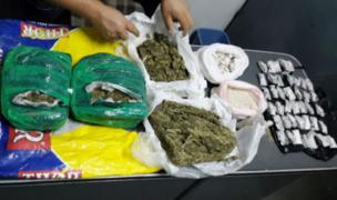 PNP incautó media tonelada de marihuana en vehículos que trasladaban víveres