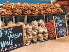 Agricultores de Papa participan en el Mercado Minagri de la Chacra a la Olla
