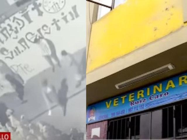 Surquillo: veterinario acuhillado en pleno estado de emergencia narró cómo ocurrió ataque