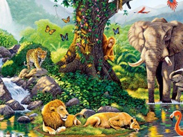 Día Internacional de la Diversidad Biológica: ¡La importancia de cuidarla!