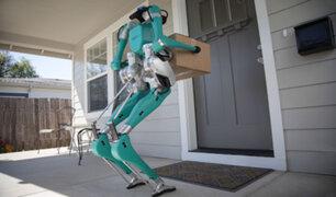 Conozca al robot capaz de realizar compras y mandados
