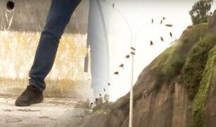 ¡Atención conductores!: tome sus precauciones si circula por la Costa Verde