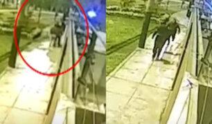 """Cámaras de seguridad captaron como actúan """"Los Robacasas"""" en cuarentena"""