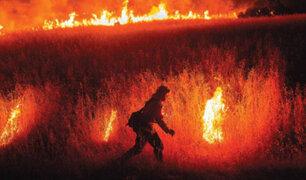 EEUU: incendios forestales azotan el norte de California