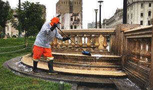 Plaza San Martín: realizan trabajos de mantenimiento y recuperación de áreas verdes