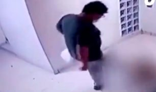 Chorrillos: vecinos denuncian maltrato a una perrita que sufrió duros golpes por su dueño