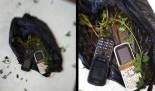 Tumbes: mujer trató de ingresar dos celulares camuflados en bolsa con culantro a penal