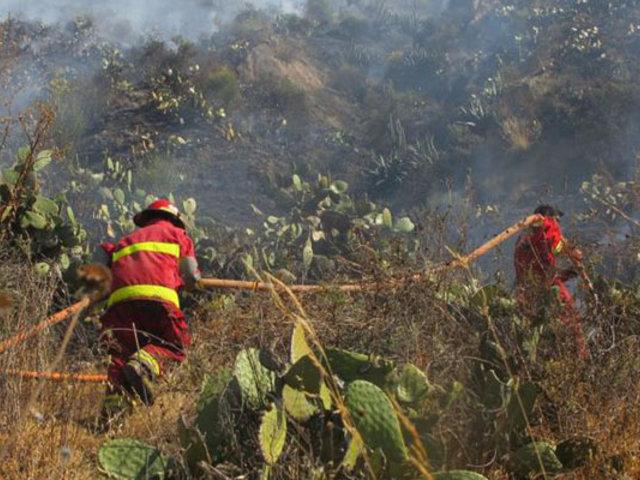 Tras ardua labor controlan incendios forestales en Áncash, Cusco y Pasco