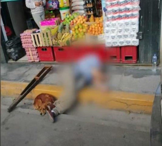 Cajamarca: Perro se queda junto al cuerpo de su amo