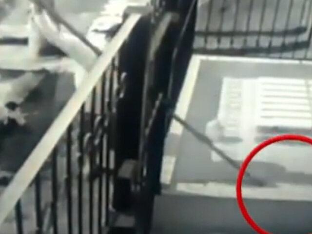 Comas: ladrón es captado robando un par de zapatillas en la puerta de una vivienda