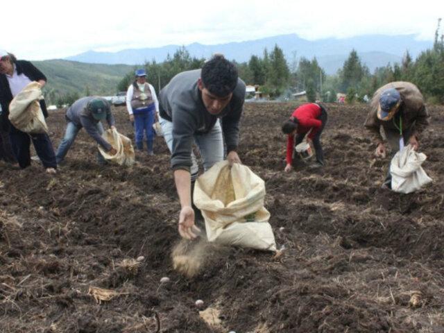 FAE Agrícola: Gobierno alista programa para financiar campaña del sector
