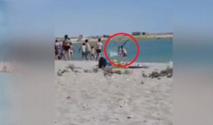 VIDEO: apalean foca hasta dejarla moribunda para tomarse fotos con ella