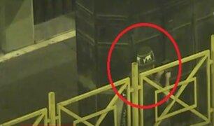 Cercado de Lima: detienen a ladrones que pretendían robar quioscos