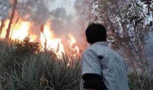 Pasco: incendio forestal reduce a cenizas cientos de hectáreas de pastizales