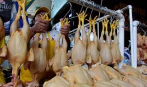 Economía familiar en riesgo por alza en el precio del pollo, advierte experto