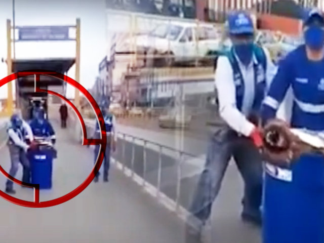 Denuncian que trabajadores de la municipalidad de Lima maltrataron a un perro