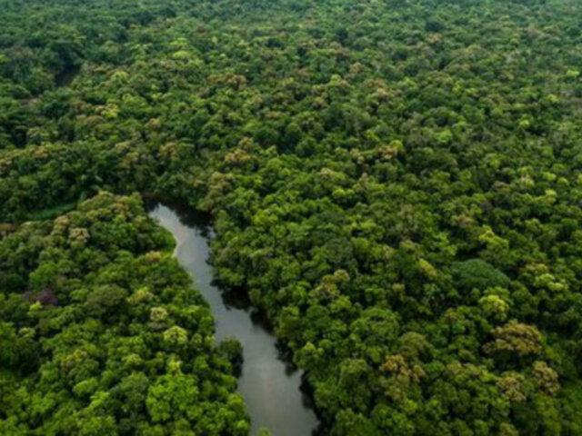 Perú será parte del proyecto ambiental del PNUD junto a otros cuatro países del mundo