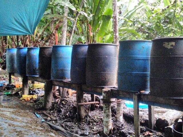 Loreto: Fuerzas Especiales destruyen laboratorios clandestinos donde se procesaba droga