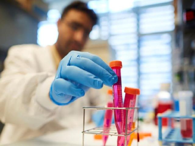 Reino Unido: desarrollan tratamiento que reduce un 80% la cantidad de pacientes en UCI con coronavirus