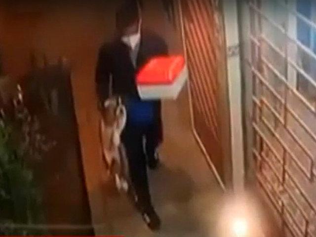 SMP: cámara de seguridad registra el robo de una mascota
