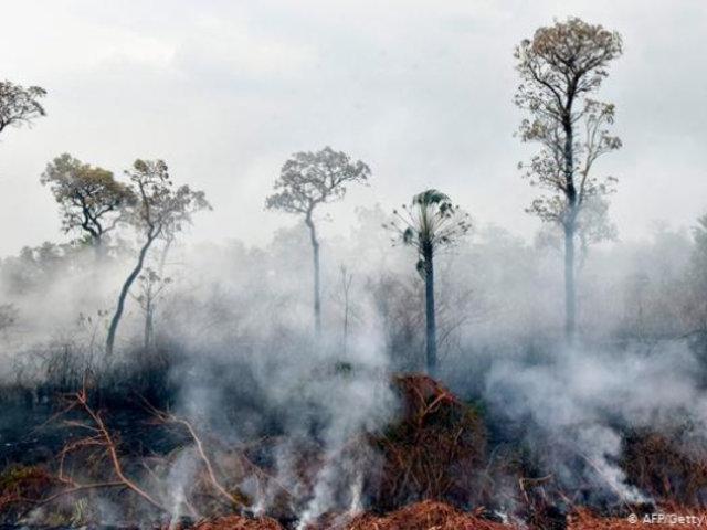 Bolivia: incendio forestal afecta 25 mil hectáreas de la Amazonía