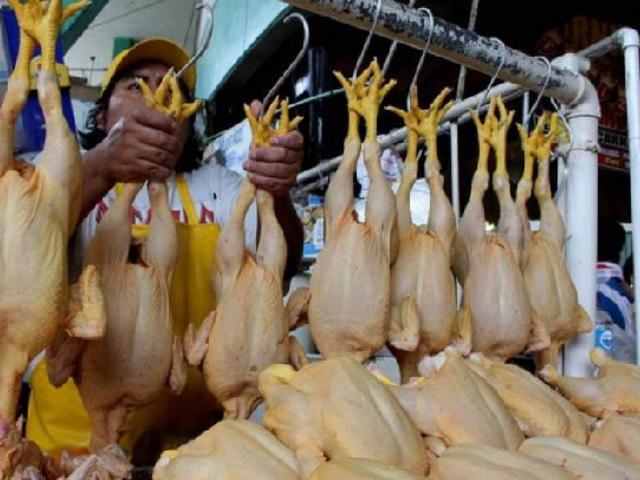 Alternativas ante el incremento del precio del pollo