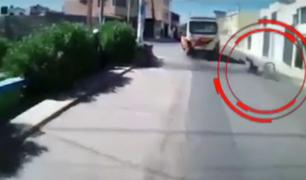 Arequipa: conductor de bus atropella a ciclista y se da a la fuga