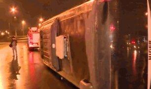 San Borja: congestión en Av. Circunvalación tras volcadura de bus
