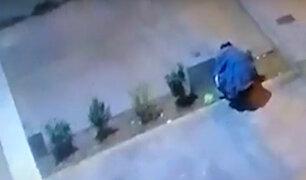 Surco: hombre quema y arranca plantas de varios jardines del distrito