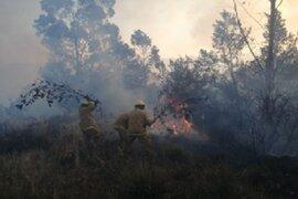 Áncash: incendio forestal arrasa 10 hectáreas de pastos naturales y bosques
