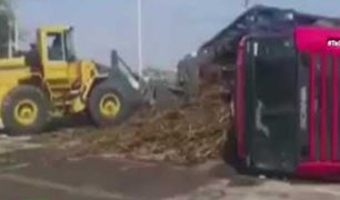 Piura: vecinos se aprovechan del petroleo regado de un trailer volcado