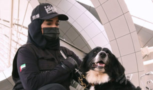 Dubái utiliza a perros para detectar COVID-19 en aeropuerto
