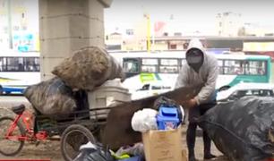 Recicladores viven en precarias condiciones bajo un puente en la Panamericana Norte