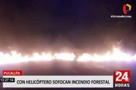 Pucallpa: incendio forestal consumió terrenos del Instituto Superior Tecnológico Suiza