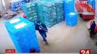 Cañete: Asaltan a comerciantes mayoristas de pollos