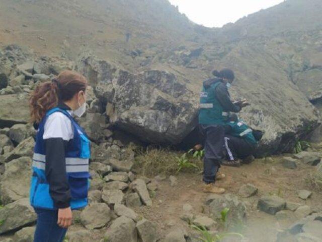 MML inspecciona Lomas de Villa María del Triunfo para constatar denuncias ambientales
