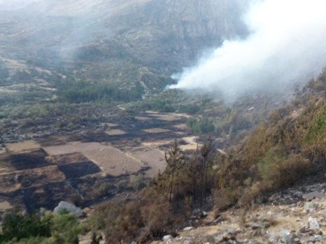Incendio forestal en Áncash: enviarán brigadas para controlar destrucción de pastizales