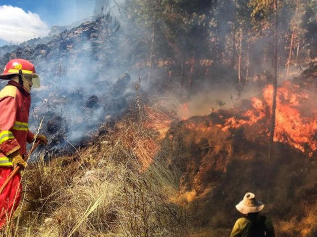 Cusco: incendio forestal en distrito de Ocongate deja más de 50 heridos