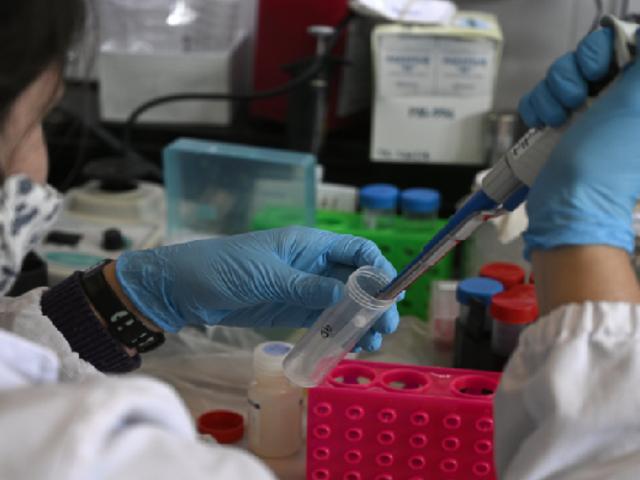 Australia: producirán vacuna contra el coronavirus y se suministrará gratis a la población