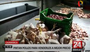 Cajamarca: pintaban pollos para venderlos a mayor precio